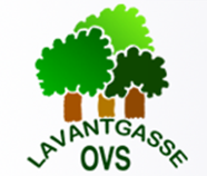 vs lavantgasse